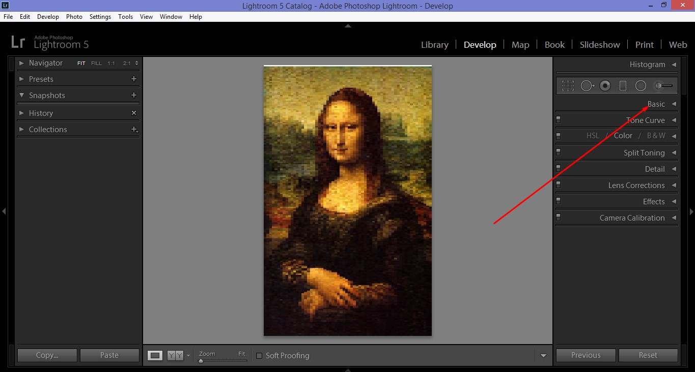 Apply Basic Options in Monalisa Image