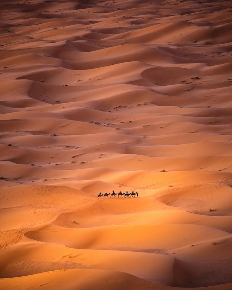 Alone in the Desert by Carles Alonso