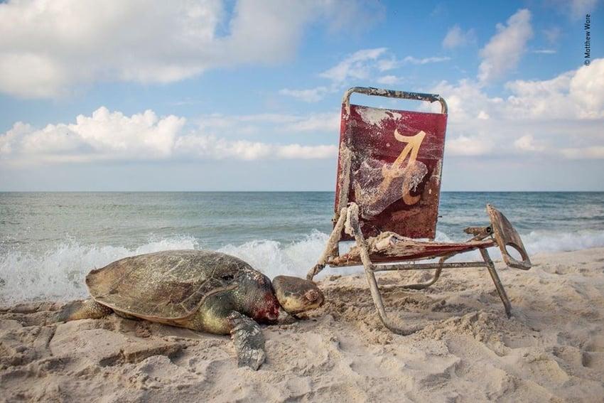Beach Waste- best photographs by Matthew Ware