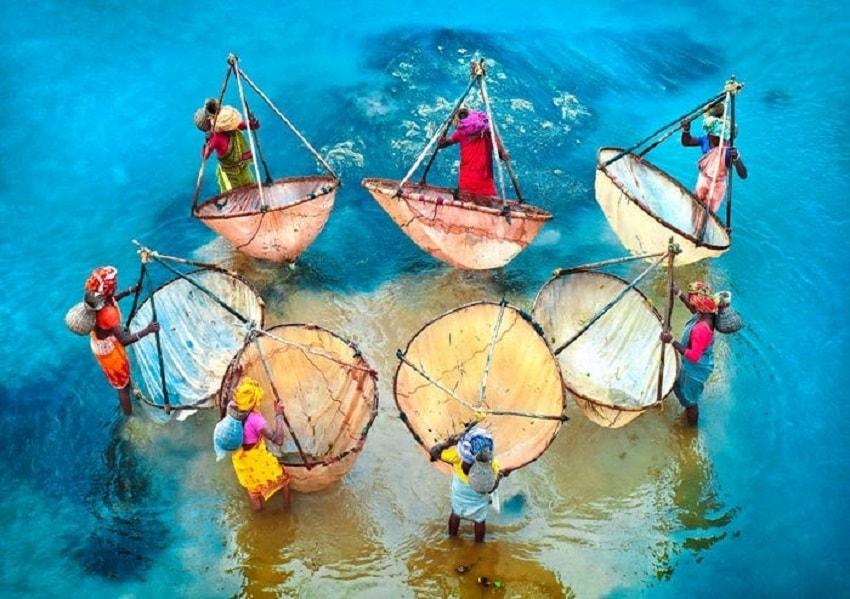 Colors of Life by Pranab Basak