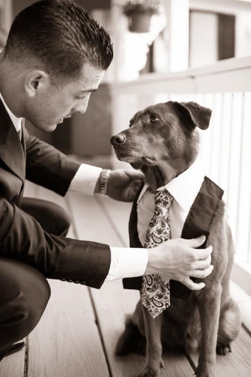 Man's Best Friend Becomes His Best Man' by Julie Newman