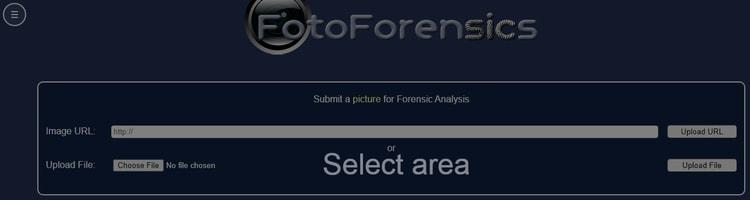 FotoForensics-Fake Image Detector