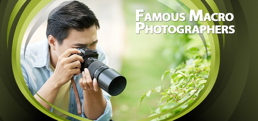 Famous Macro Photographers